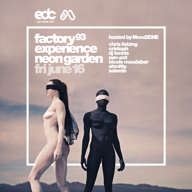 EDC Las Vegas 2017 <br />(Night 1)